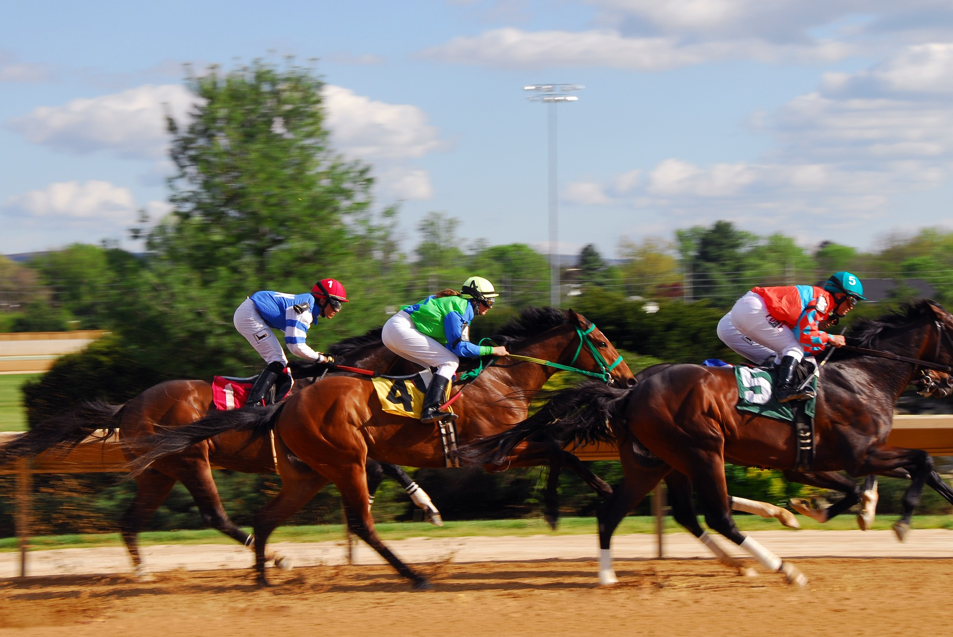 Dokąd udać się na wyścigi konne i jak obstawiać jeździeckich faworytów