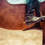 Jazda konna – jak zacząć i co warto wiedzieć?